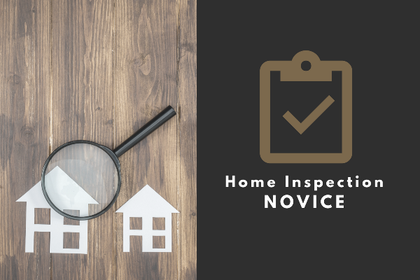 Home Inspection Novice