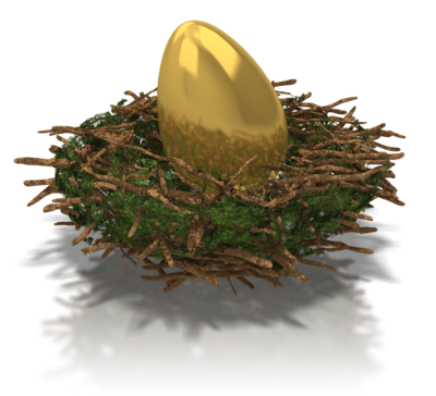 Growing Your Real Estate Nest Egg